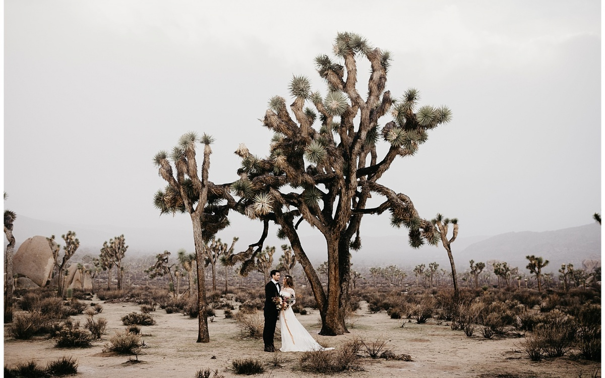 Krystal and Daniel, Joshua Tree Elopement
