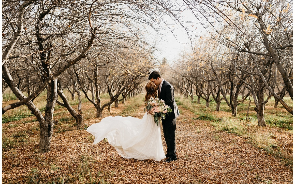 Bria and Logan, Autumn Orchard Bridals